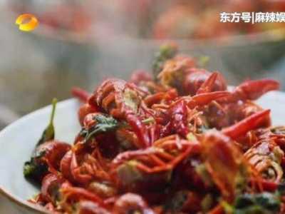 黄磊炒菜用的什么锅 《向往的生活》黄磊炒菜油放太多